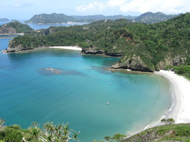 小笠原諸島の画像 p1_21