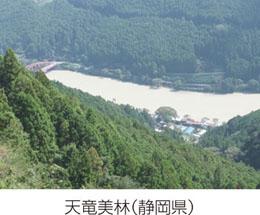 第I章 森林の多面的機能と我が国の森林整備