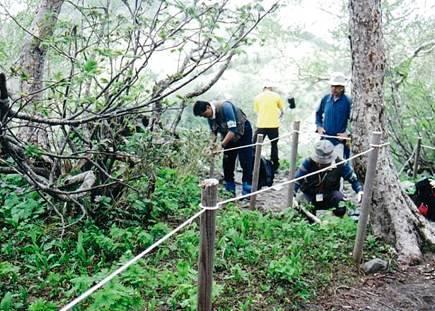 写真:登山道の整備活動