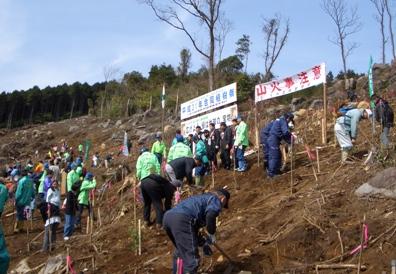 植樹祭への参加