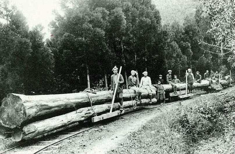 内大臣森林鉄道
