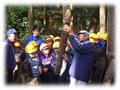 森林環境教育(ほだ木)