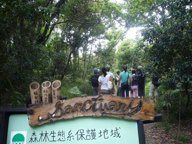 小笠原諸島の自然の画像 p1_6