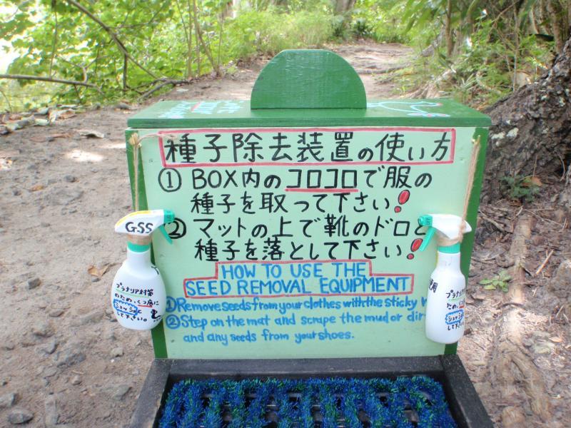 小笠原諸島の自然の画像 p1_32