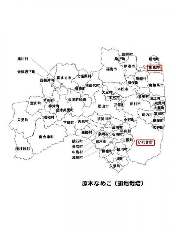 240613fukusima3