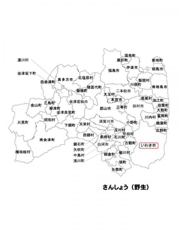 h271002fukusima4