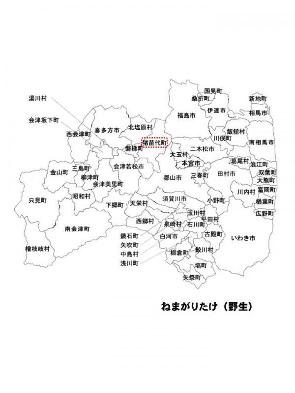 h271002fukusima5