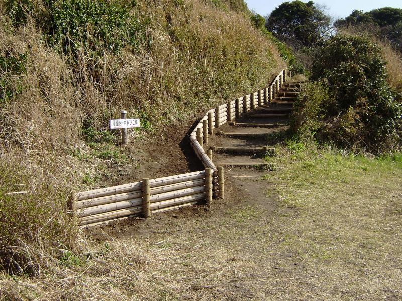 竹の新たな用途:竹柵工