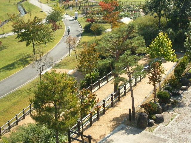 竹の新たな用途:竹舗装をした歩道