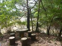 北山森林スポーツ林
