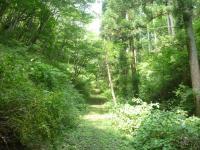 花立自然観察教育林