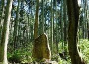 植樹祭発祥の地記念碑