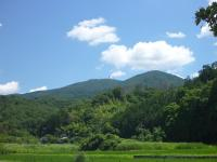 筑波山森林スポーツ林