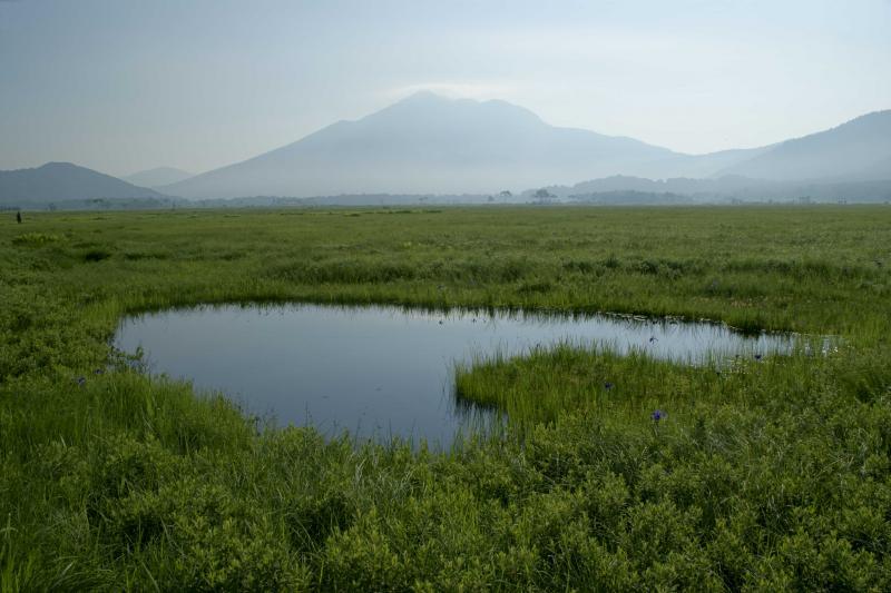 ハート形の池塘