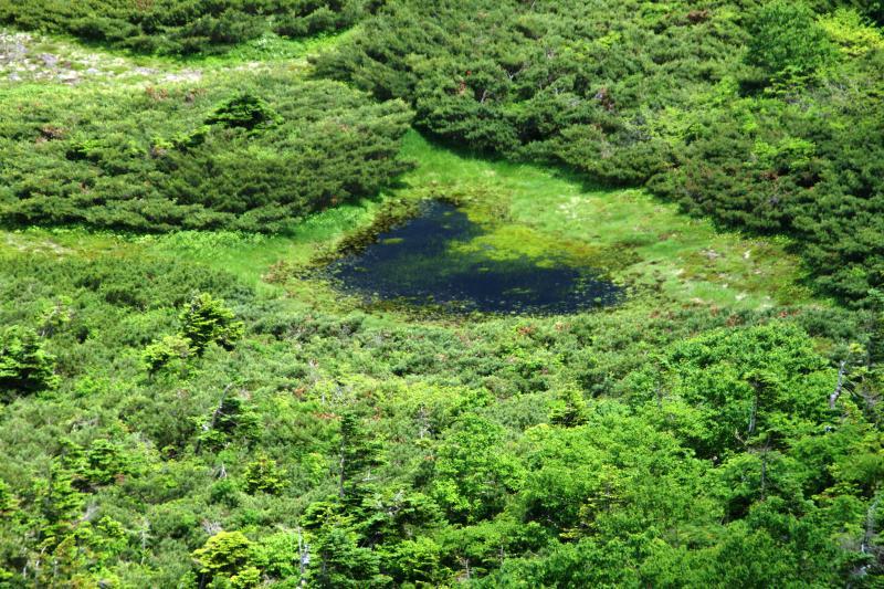 ハート形の火口池