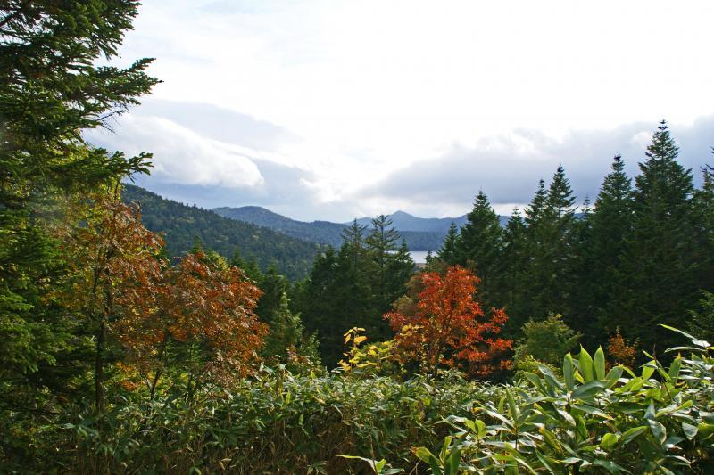 沼山峠展望台からの紅葉