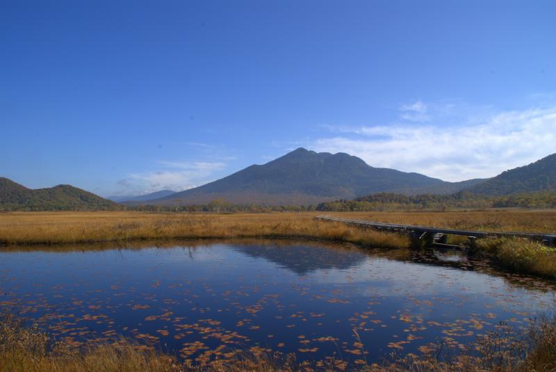 中田代(池塘と至仏山)