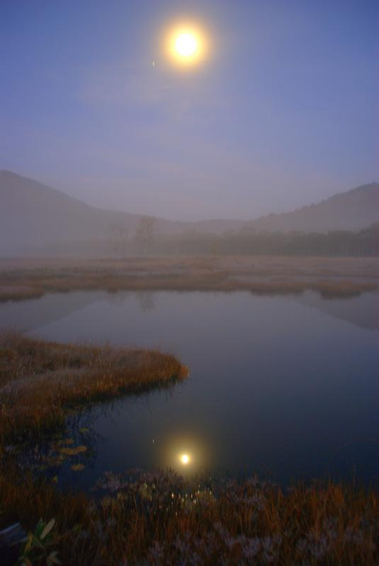 月の光に照らされる池塘
