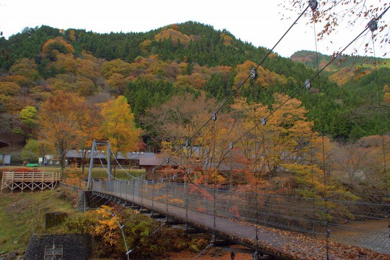 森林科学館周辺の紅葉