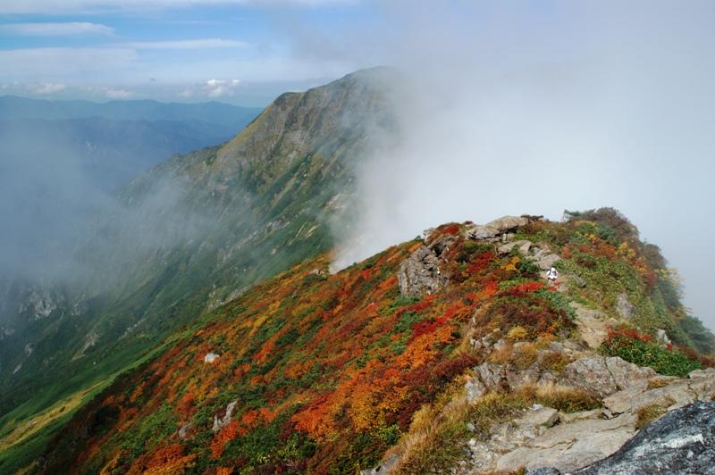奥の院から茂倉岳方面を望む