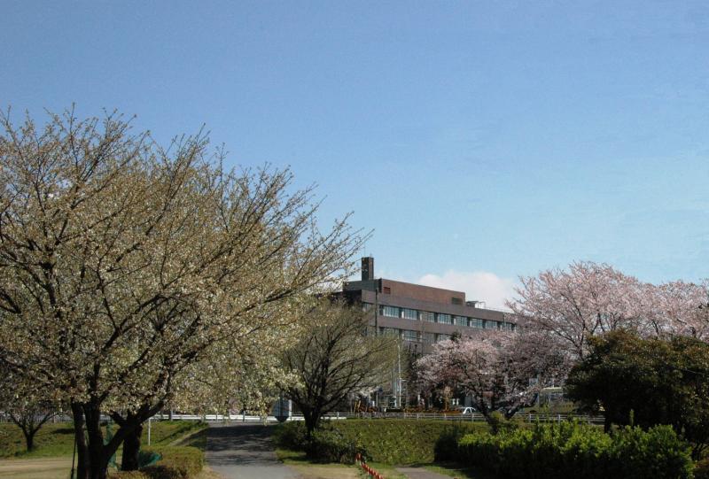 春の関東森林管理局-1