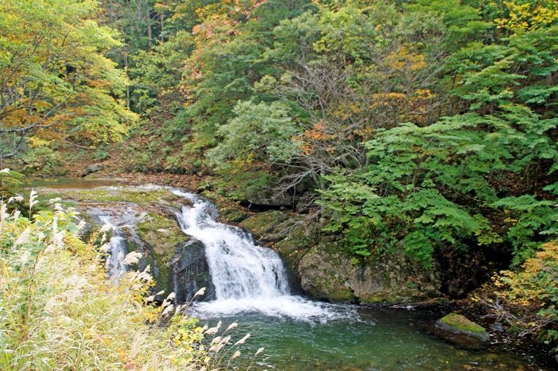 木精(こだま)の滝-1