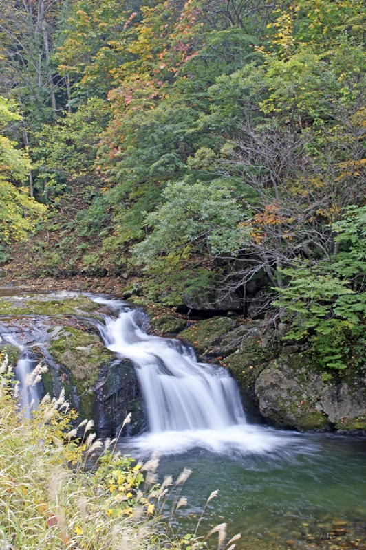木精(こだま)の滝-2
