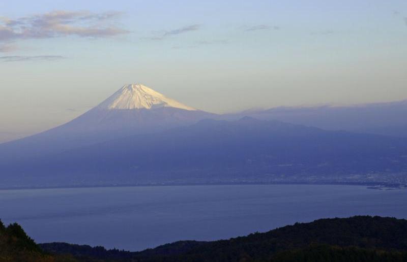 達磨山から富士山を望む