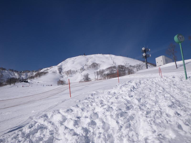 筍山(タケノコヤマ)