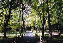筒森自然観察教育林