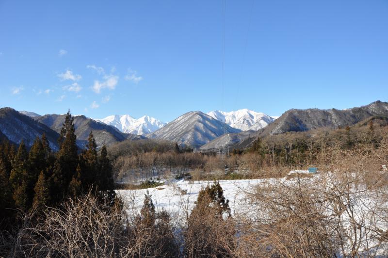 冬の観察会