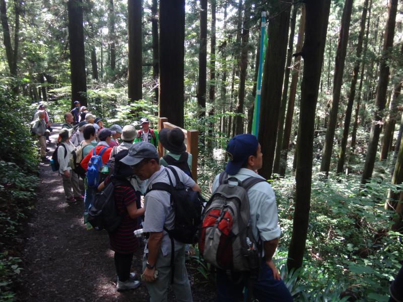 H28山の日記念イベント;高尾山ハイキング02