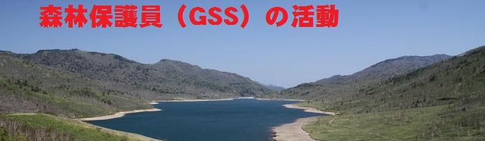 GSSの活動について