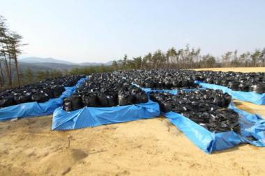 仮置場に搬入中の汚染土壌等(二本松市)