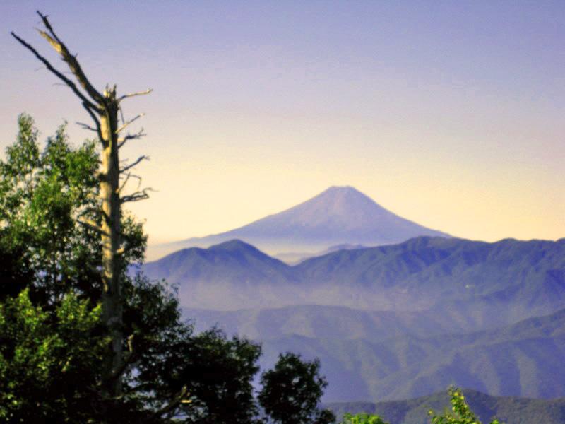 雲取山から望む富士山