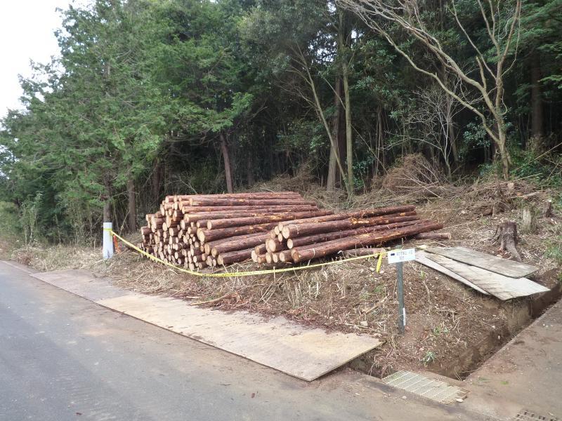 協定箇所より生産された民有林材(浜松市日比沢地区)