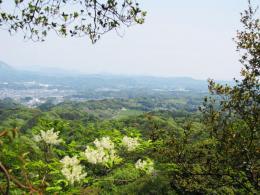 小笠山眺望