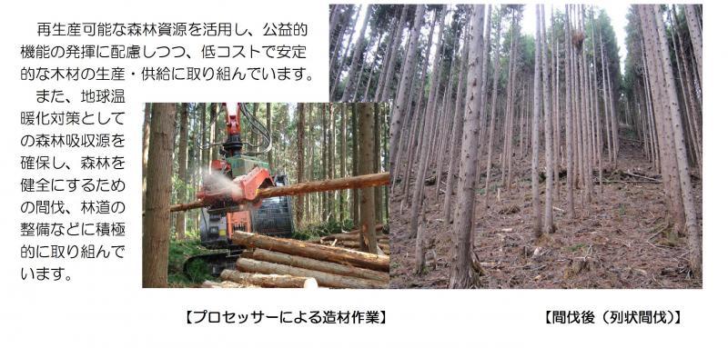 H25管内概要 木材資源