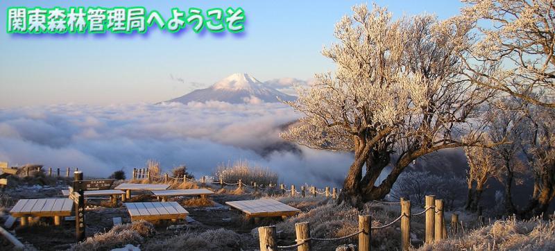 神奈川県の最高峰蛭ヶ岳山頂から望む富士山