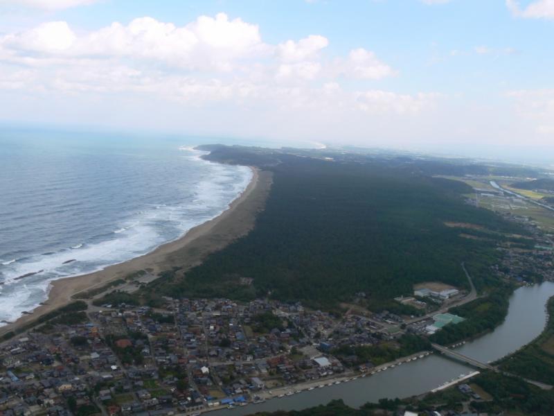 加賀海岸国有林