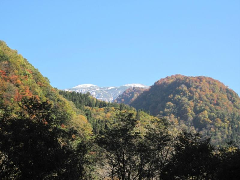 紅葉した六万山(左)と白山(中央)