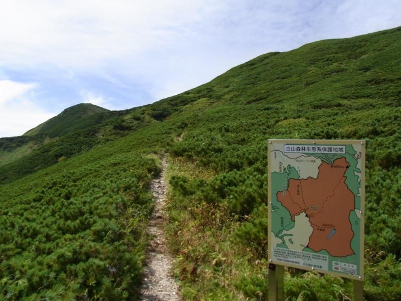 白山森林生態系保護地域(七倉山、四塚山)