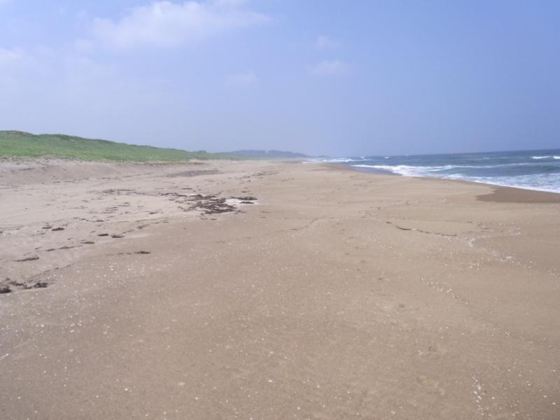 清掃後の加賀海岸