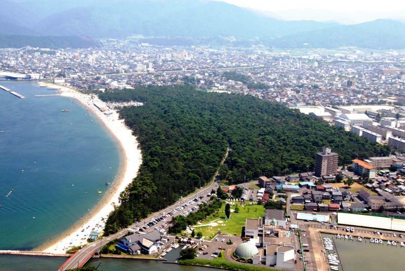 名勝「気比の松原」は日本三大松原の1つ:松原国有林(敦賀市)