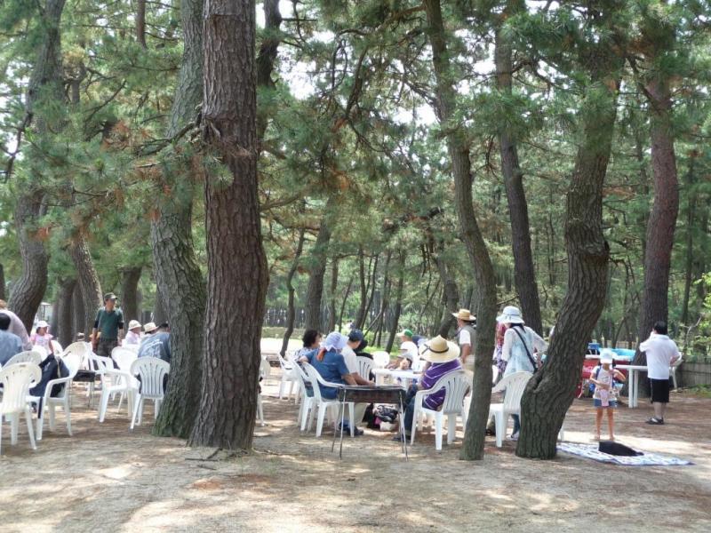 海水浴シーズンには多くの人々が訪れる:松原国有林(敦賀市)