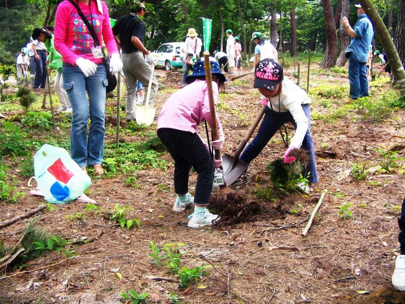 ボランティアによる植樹作業:松原国有林(敦賀市)