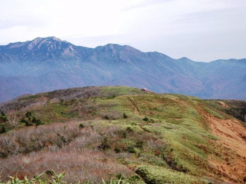 三百名山・標高1,692m.福井・石川県境に位置する:赤兎山国有林(大野市)