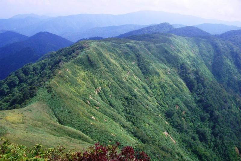 山頂からは白山等が展望・越美山地緑の回廊に指定:冠山国有林(池田町)
