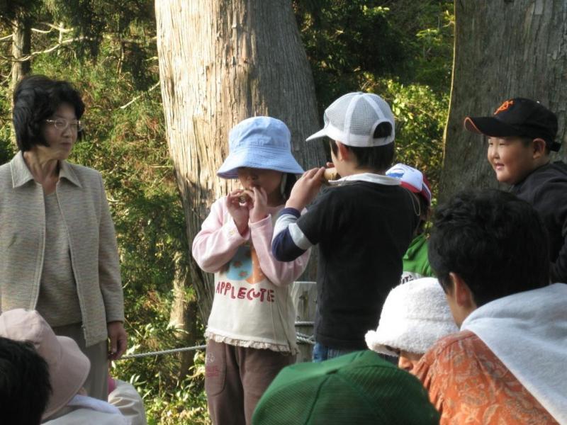 自然観察会・オカリナの演奏:経ヶ岳国有林(大野市)