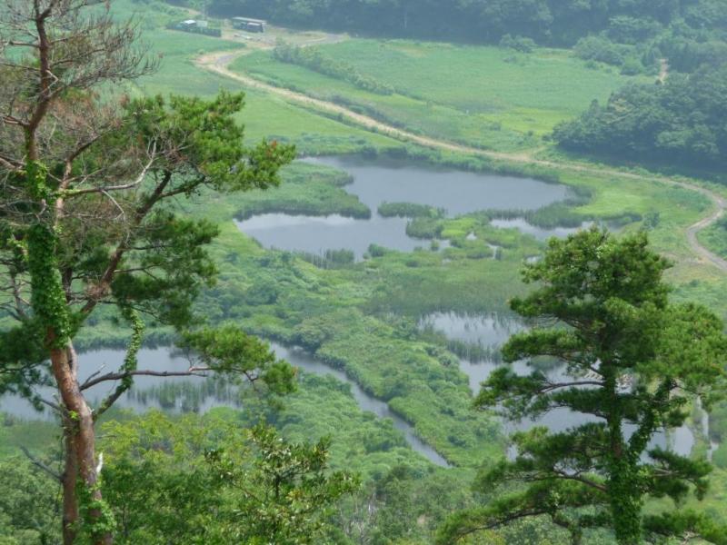 天筒山風景林山頂から中池見湿地